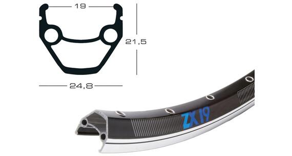 """Exal ZX 19 28"""" Vanne 622-19 VL , musta"""